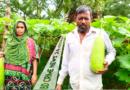 মাদারীপুরে লাউ চাষে স্বাবলম্বী হয়েছেন কৃষক ফিরোজ চৌধুরী
